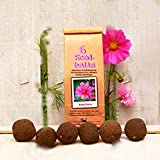 Die Seedball-Manufaktur Seedballs Rosa Flora 3