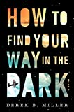 How to Find Your Way in the Dark, 1 (A Sheldon Horowitz Novel)