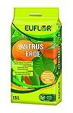 Euflor Zitruserde 15 l Tragebeutel aufgedüngte Spezialerde für alle Zitrusgewächse und mediterrane Kübelpflanzen im Innen- und Außenbereich, kräftige grüne Blätter und gesundes W