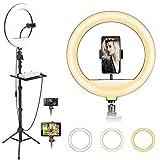 ZOMEI Ringleuchte, 12 Zoll / 30cm 20W dimmbare LED-Ringlicht mit Handyhalter und 170cm Stativ, 3 Beleuchtungsmodi & 10 Helligkeitsstufen für Fotografie/YouTube Video/TikTok/Live-Stream/Makeup