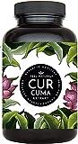 Curcuma Extrakt von FEEL NATURAL - (90 Kapseln) - laborgeprüft, vegan, hochdosiert, ohne unerwünschte Zusätze in Deutschland p