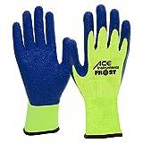 ACE 3 Paar Frost Winter-Arbeitshandschuhe - Kälte-Schutz-Handschuhe für die Arbeit - EN 388/511 - Neongelb/Blau - 09/L