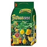 Zitruserde für Zitronen- und Zitruspflanzen von Bodengold Premium 5 L