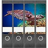 Etiketten für Ordner | Wasserschildkröte Tier | 4 breite Aufkleber für Ordnerrücken | Selbstklebende Design Ordneretiketten Rück
