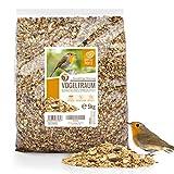 wildtier herz I Vogeltraum Schalenlos - Premium Vogelfutter, Wildvogelfutter Schalenfrei, Ganzjahresfutter mit Sonnenblumenkerne, Vogel Streufutter (5kg)
