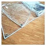 AWSAD Transparente Plane Regendicht Windschutz Weiches Glas Faltbar PVC-Plane Mit Ösen für Fenster draussen Pflanze, 13 Größen (Color : Clear, Size : 1x2m)