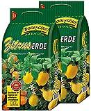 Zitruserde 2x15 Liter Bodengold Premium Citrus-Spezialerde Blumenerde 30 L