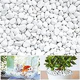 LuluDa Dekorative Steine Weiß Kieselsteine Klein Dekosteine Natürliche Zierkies KieselMarmorsteine Deko Naturstein für Blumentöpfe Aquarium Garten Balkon, 500g