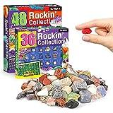 B/M Fossilien- und Edelstein-Ausgrabungs-Kits 36/48-teiliges Dinosaurier-Spielzeug, Geographisches Lernspielzeug, STEM-Wissenschafts-Kits für Mineralogie- und Geologie-E