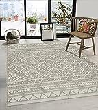 the carpet Calgary In- & Outdoor Teppich Flachgewebe, Modernes Design, Trendige Farben, Superflach, UV- und Witterungsbeständig, Beige, 120 x 160