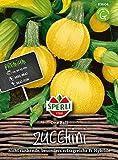 83604 Sperli Premium Zucchini Samen One Ball | Früh | Ertragreich | runde Zucchini | Zucchini Saatgut | Zucchini R