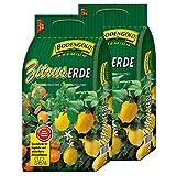 2 Sack Zitruserde Bodengold á 15 L = 30 Liter Spezialerde für Zitrusfrü